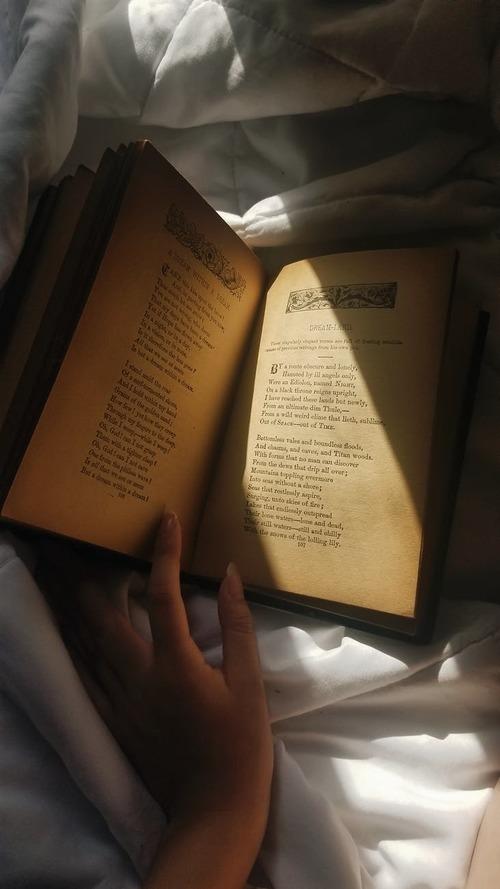 Eine inspirierende Leseecke einrichten